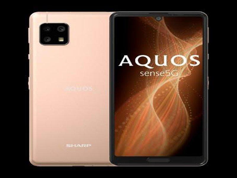 夏普SHARP AQUOS sense5G開賣 親民價格體驗5G世代。(夏普提供)